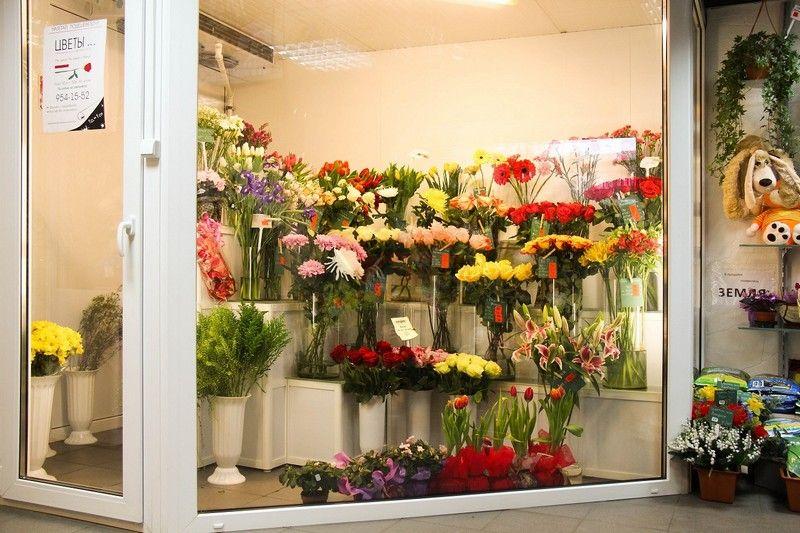 Магазин цветов флористика на профсоюзной, цветы москва вао